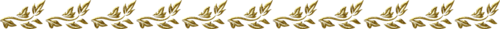Gold Borders (16).png