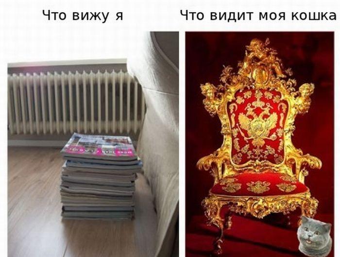 http://img-fotki.yandex.ru/get/4701/130422193.c0/0_73066_e7202845_orig