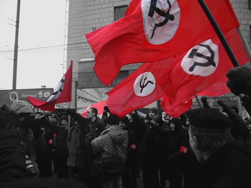 национал большевизм картинки она плотных