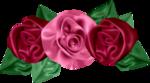 «pretty_in_pink» 0_7d5b7_ffdb8821_S