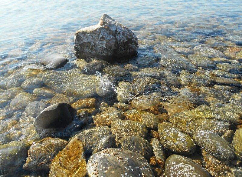 Прозрачность мартовской спокойной воды Азовского моря ... DSCN1302.JPG