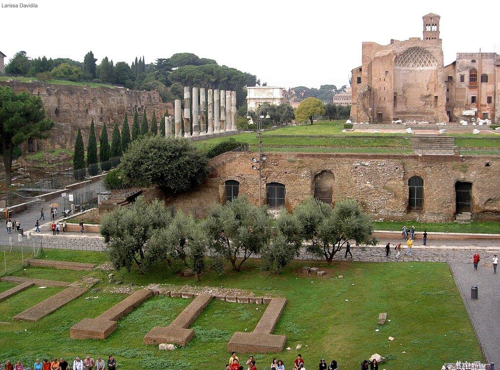 Вид с Колезея - храм Венеры и Рома.