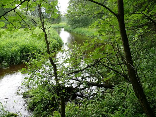 Река Лубья