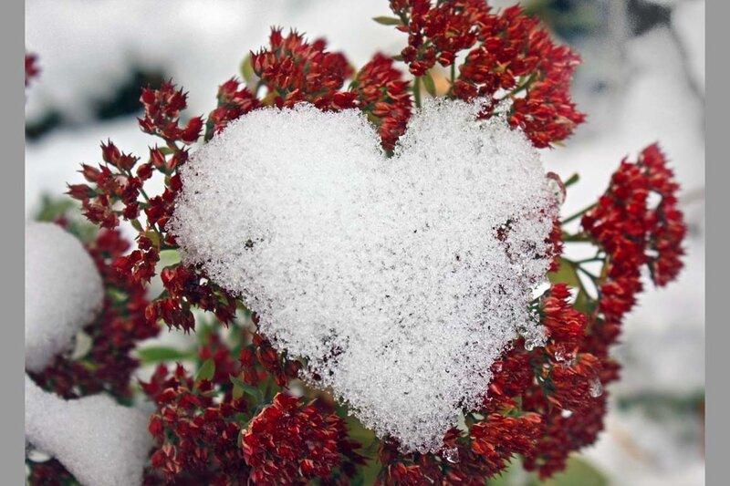 Тамблерские картинки сердце входе желающим