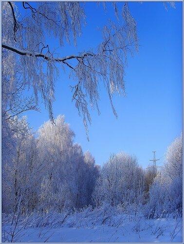 Зима в зените
