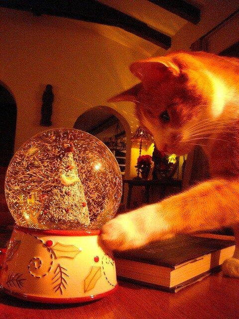 сувенир снежный шар