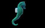 морской конек (8).png