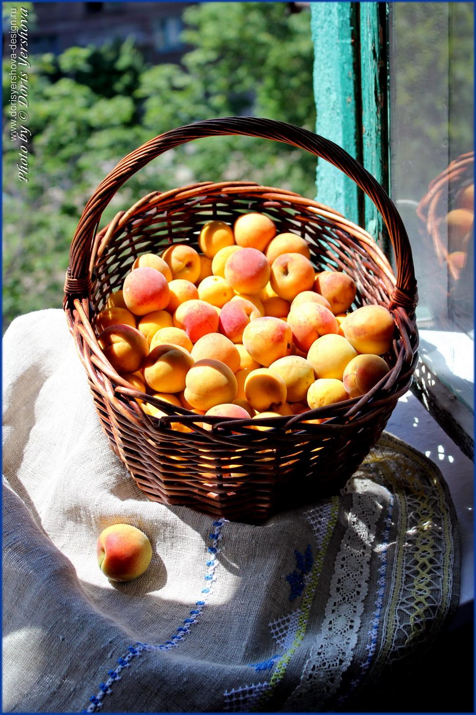 травы, цветы, июль, абрикосы в корзине на вышитой скатерти,  Фото  Дорис Ершовой