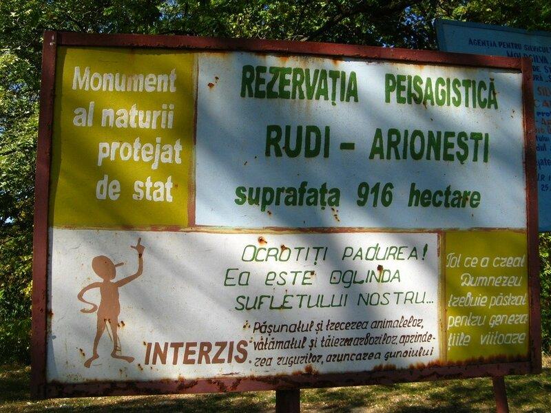 Рудь - Арионешты (101).JPG