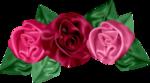 «pretty_in_pink» 0_7d5b5_e1c2a463_S