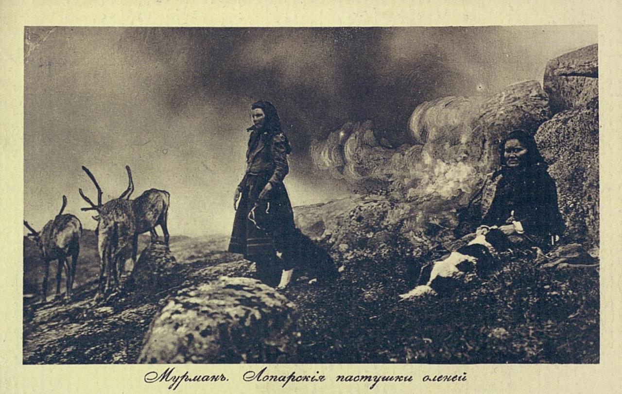 Мурман. Лопарские пастушки оленей