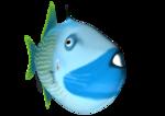 SD NV FISH 2.png