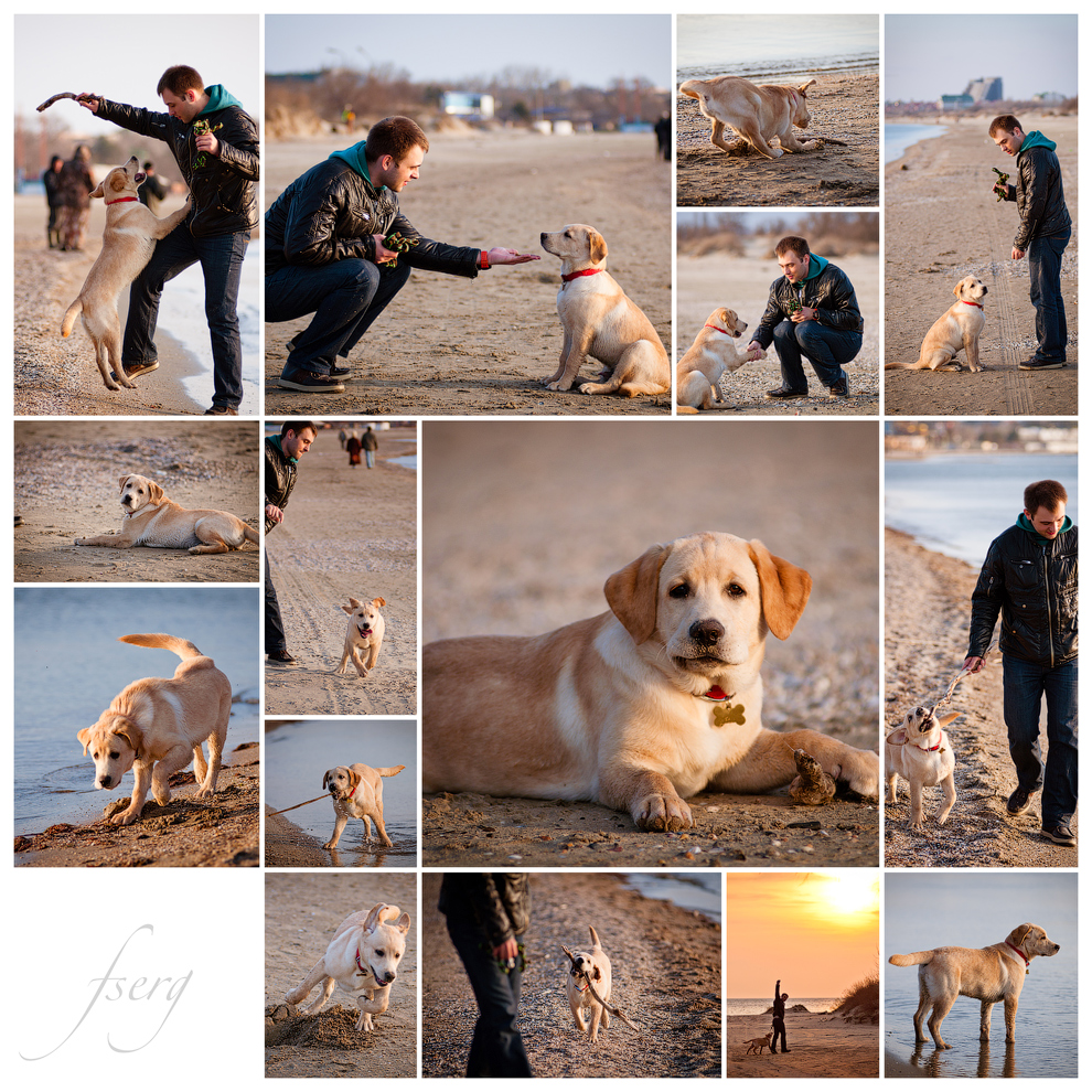 Sandy (2011-04-17)