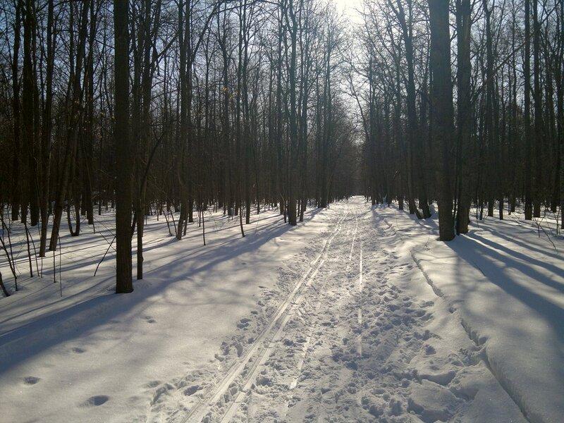 3. Лыжня