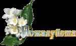 """Картинки """"благодарности """" 0_4ff77_ef858246_S"""