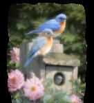 Птицы  разные  0_51c67_17cbdf7_S