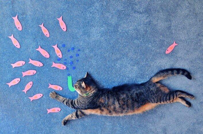 кошачьи картины