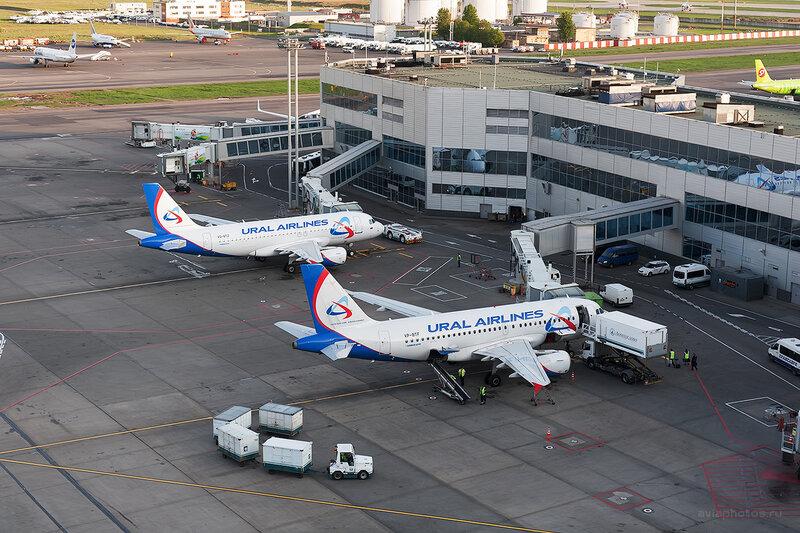 Airbus A319-112 (VP-BTF) Уральские Авиалинии D708681