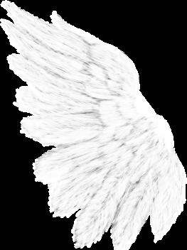 BIBIWITHOUTYOU ELEM (44).png