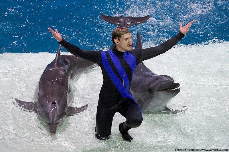 Лето. ВДНХ. Москвариум. Дельфин. 14.08.15.06..jpg