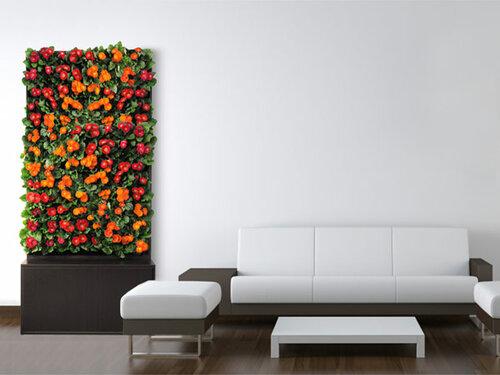 Вертикальное озелененте стен