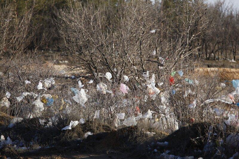 Волгоградский губернатор разозлился и обещает строго спрашивать за чистоту придорожных территорий 0_491ed_fc0c3b1b_XL