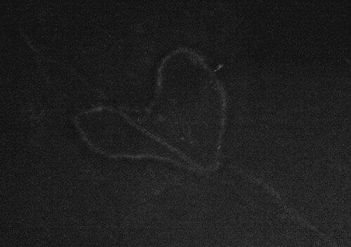 Асфальтовое сердце
