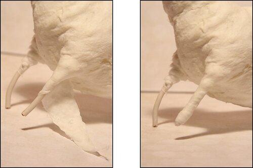 Берем длинный и узкий кусочек ваты, промазываем клеем и обматываем лапу сверху вниз.