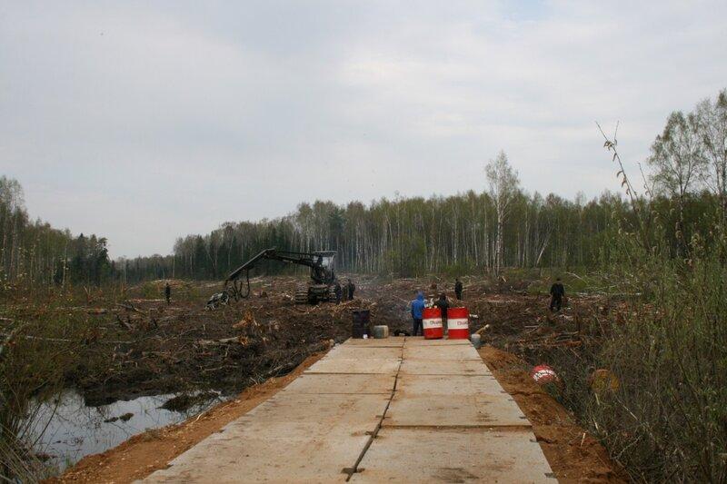 Химкинский лес 4 мая 2011