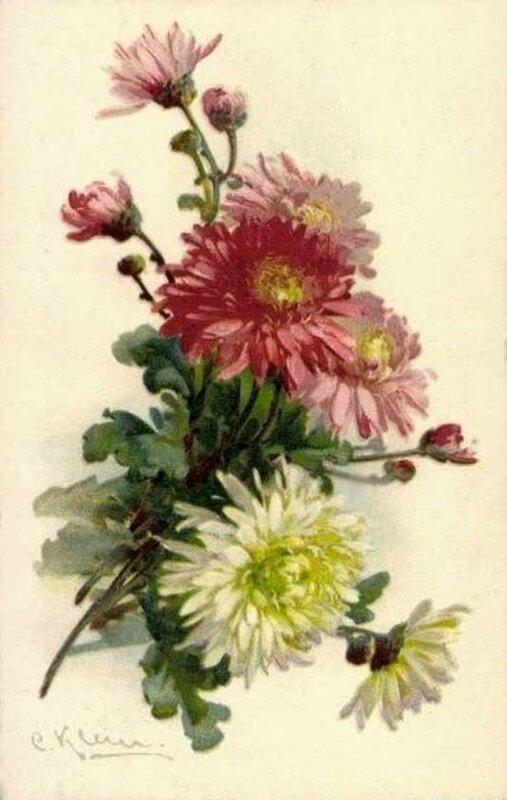 К. Кляйн. Хризантемы.