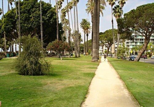 Калифорния. Санта-Моника. Дорожка для прогулок.