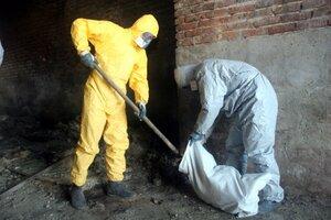 В Приморье выявлено 145 килограммов нелегальных китайских пестицидов