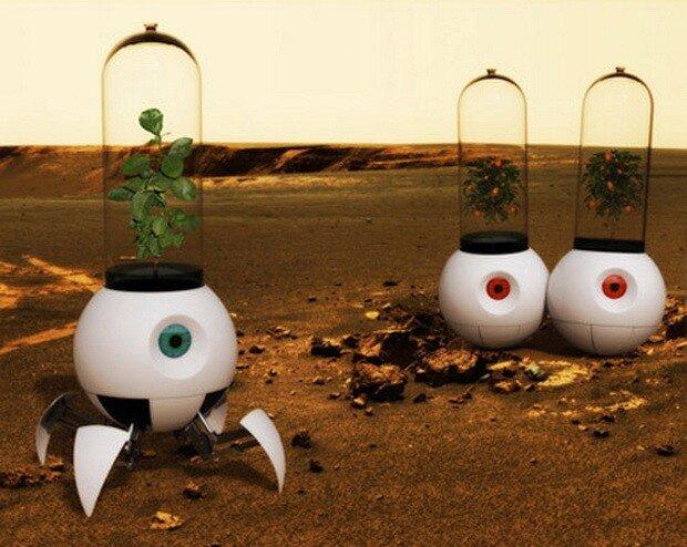 Придуманий робот для висадження рослин на Марсі.