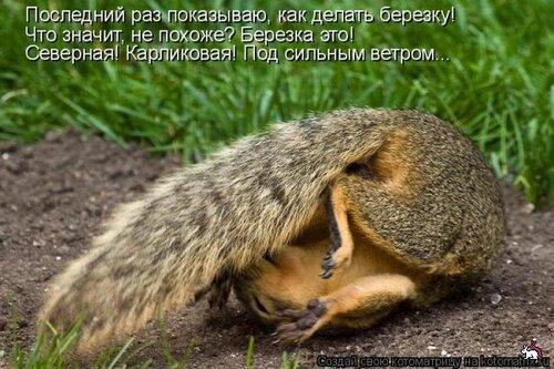 http://img-fotki.yandex.ru/get/4704/131884990.33/0_8f135_dd3ee4be_L.jpg