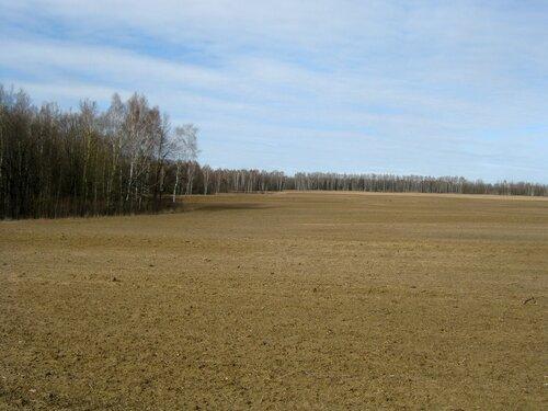 Март. Поле возле Любимовской межи.