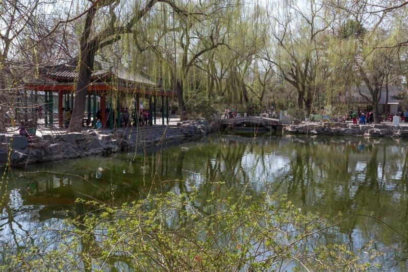 Озеро и беседка, Пекинский зоопарк