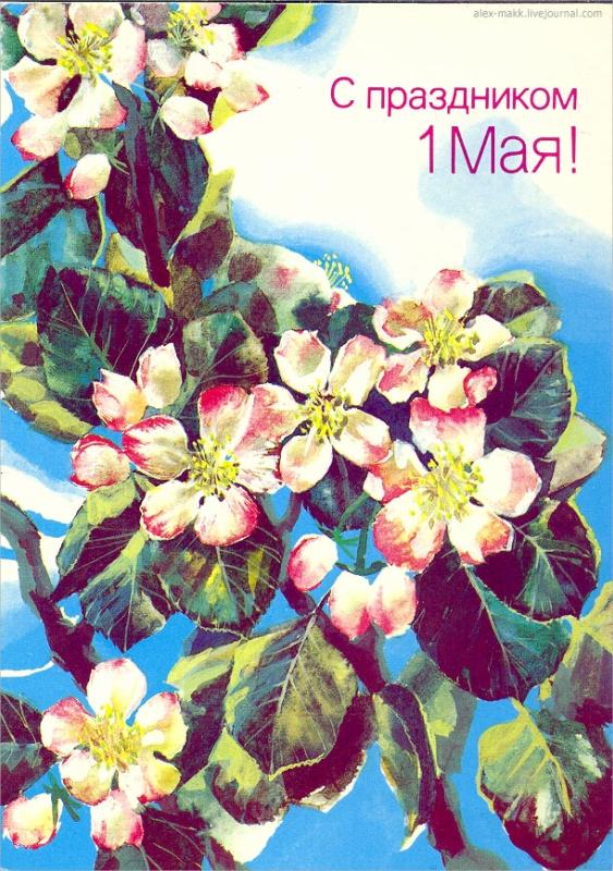 1988-Морозов-Мин.связи СССР.jpg