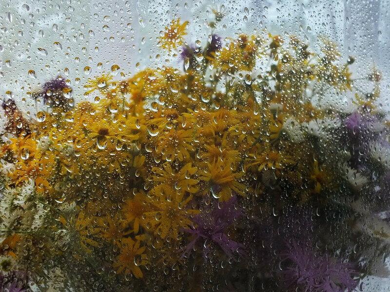 А за окнами дождь.....