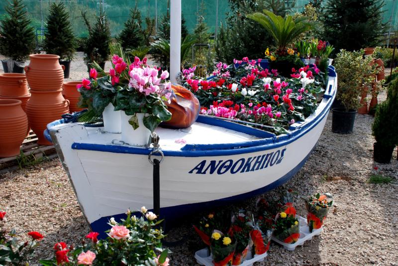 лодка из цветов фото