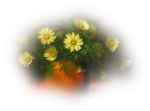 PatryMists_06_Daisy_06.png
