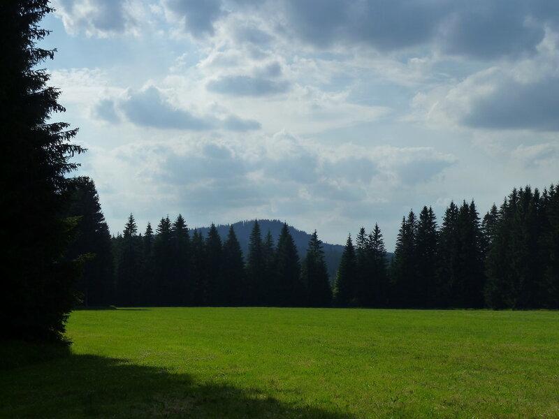 Вот эта полянка нам понравилась, и мы решили, что тут Слат и есть:)