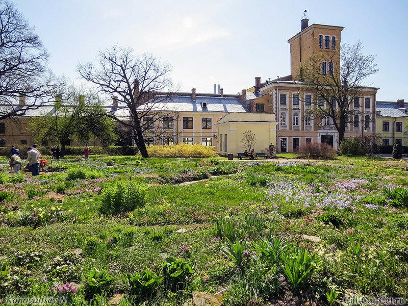 Ботанический сад Санкт-Петербурга