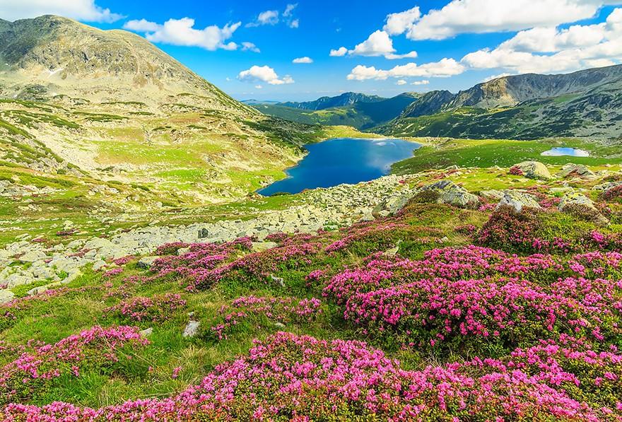 17. Национальный парк Ретезат, Карпаты. (Фото: Янош Гаспар)