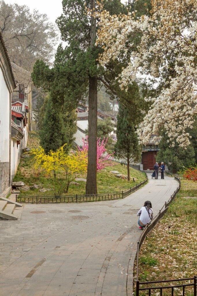Павильон Юаньфань, парк Бэйхай