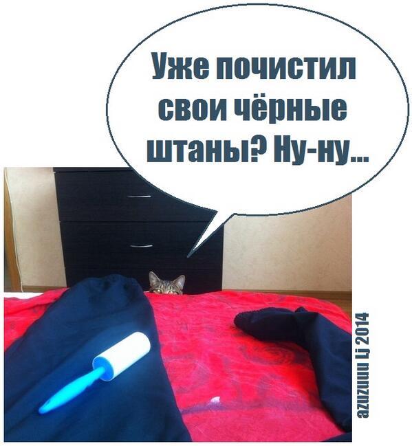 Blp_k4xCEAAYajg.jpg