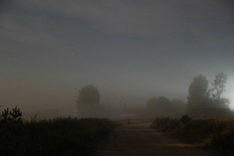 Туман и лунные тени. Дорога к деревне и проступающие сквозь дымку силуэты деревьев, подсвеченные полной луной.