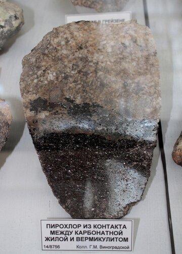 Пирохлор из контакта между карбонатной жилой и вермикулитом