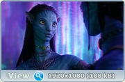 ������ 3� / Avatar 3D ������� (2009) BDRip + HDRip