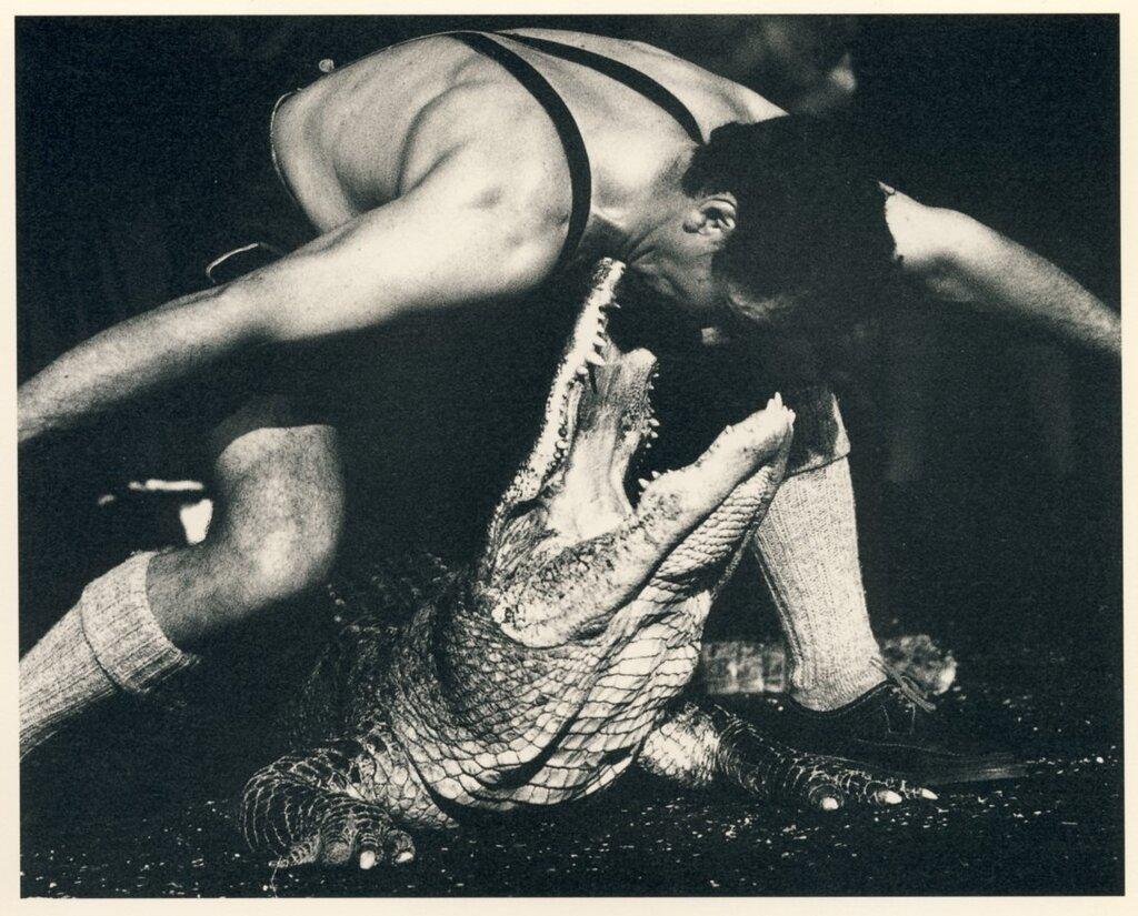 Dance with Crocodile