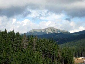 Гора Довбушанка, август 2009.Фото igorval на Яндекс.Фотках